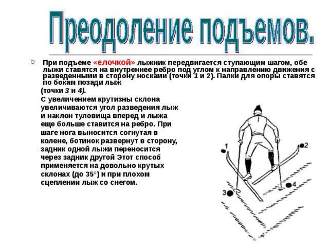 При подъеме «елочкой» лыжник передвигается ступающим шагом, обе лыжи ставятся на внутреннее ребро под углом к направлению движения с разведенными в сторону носками (точки 1 и 2). Палки для опоры ставятся по бокам позади лыж (точки 3 и 4). С увеличен…