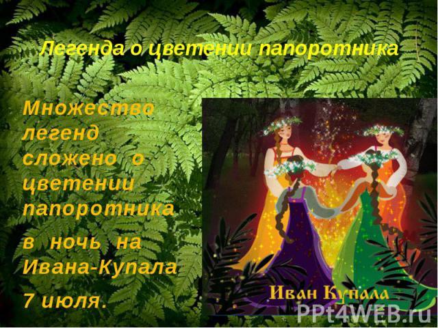 Легенда о цветении папоротникаМножество легенд сложено о цветении папоротника в ночь на Ивана-Купала 7 июля.