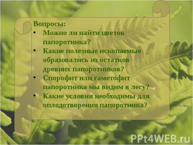 Вопросы:Можно ли найти цветок папоротника?Какие полезные ископаемые образовались из остатков древних папоротников?Спорофит или гаметофит папоротника мы видим в лесу?Какие условия необходимы для оплодотворения папоротника?