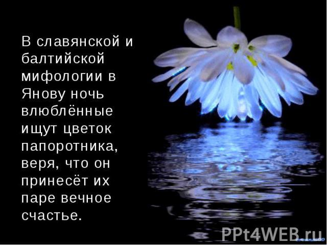 В славянской и балтийской мифологии в Янову ночь влюблённые ищут цветок папоротника, веря, что он принесёт их паре вечное счастье.