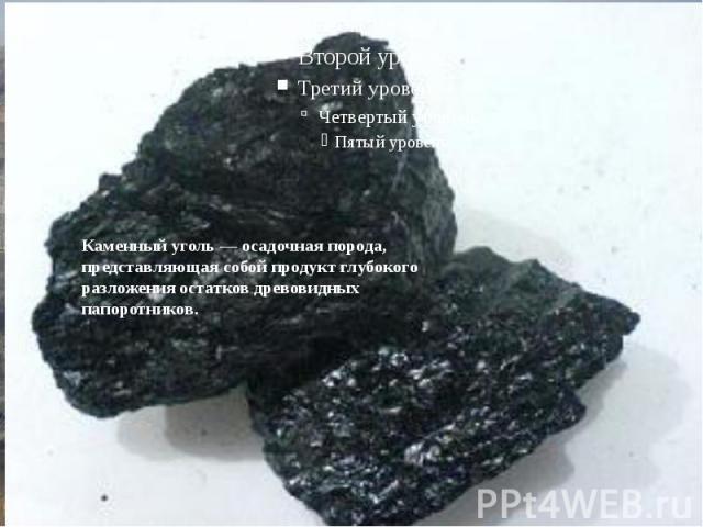 Бачатский угольный разрезУгленосные отложения Бачатского разреза включают 22 угольных пласта.С начала эксплуатации на Бачатском разрезе добыто 263,8млн тонн угля.