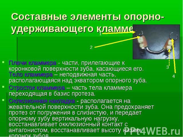 Составные элементы опорно-удерживающего кламмера:Плечи кламмера - части, прилегающие к коронковой поверхности зуба, касающиеся его. Тело кламмера – неподвижная часть, располагающаяся над экватором опорного зуба.Отросток кламмера – часть тела кламмер…