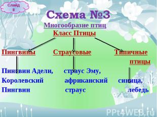 Многообразие птиц Класс Птицы Многообразие птиц Класс ПтицыПингвины Страусовые Т
