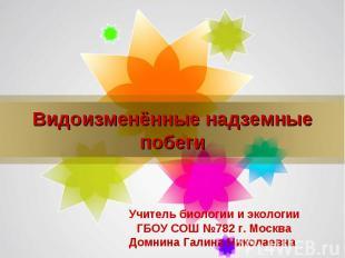 Видоизменённые надземные побеги Учитель биологии и экологии ГБОУ СОШ №782 г. Мос