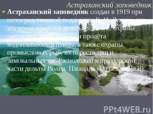 Астраханский заповедник создан в 1919 при непосредственной поддержке В. И. Ленин