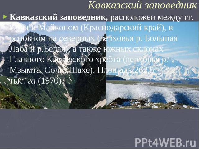 Кавказский заповедник,расположен между гг. Сочи и Майкопом (Краснодарский край), в основном на северных (верховья р. Большая Лаба и р.Белая), а также южных склонах Главного Кавказского хребта (верховья р. Мзымта, Сочи, Шахе). Площадь 262,5 тыс.га…