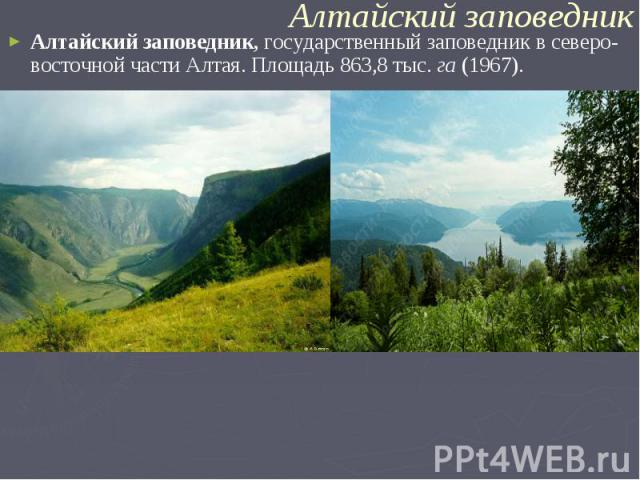 Алтайский заповедник,государственный заповедник в северо-восточной части Алтая. Площадь 863,8 тыс.га(1967).