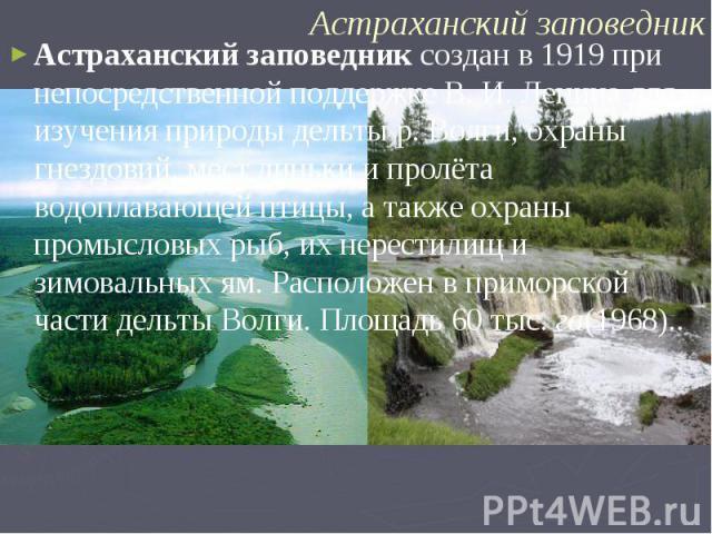 Астраханский заповедник создан в 1919 при непосредственной поддержке В. И. Ленина для изучения природы дельты р. Волги, охраны гнездовий, мест линьки и пролёта водоплавающей птицы, а также охраны промысловых рыб, их нерестилищ и зимовальных ям. Расп…