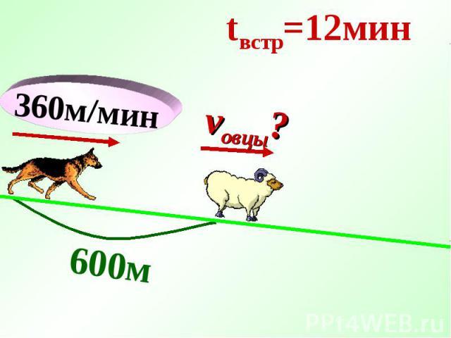 360м/мин 600м tвстр=12мин vовцы?