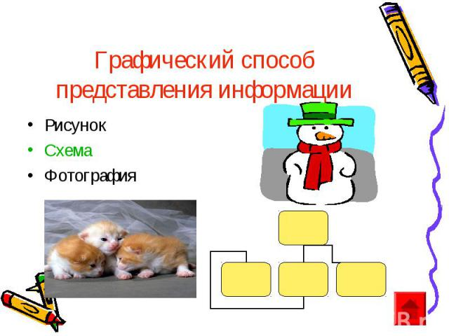 Графический способ представления информации Рисунок Схема Фотография