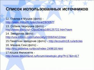 Список использованных источников12. Пчелка и Мушка (фото) - http://www.moluch.ru