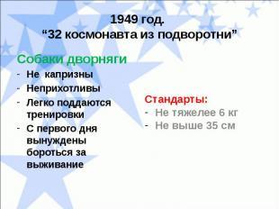 """1949 год. """"32 космонавта из подворотни""""Собаки дворнягиНе капризныНеприхотливыЛег"""
