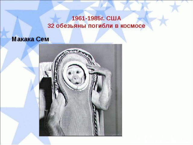 1961-1985г. США32 обезьяны погибли в космосеМакака Сем