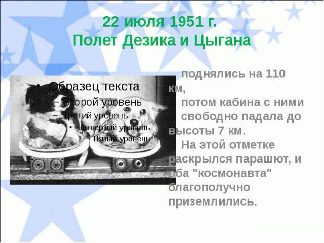 """22 июля 1951 г. Полет Дезика и Цыгана поднялись на 110 км, потом кабина с ними свободно падала до высоты 7 км. На этой отметке раскрылся парашют, и оба """"космонавта"""" благополучно приземлились."""