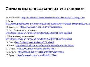 Список использованных источников8.Кот и собака - http://ne-kurim.ru/forum/thread