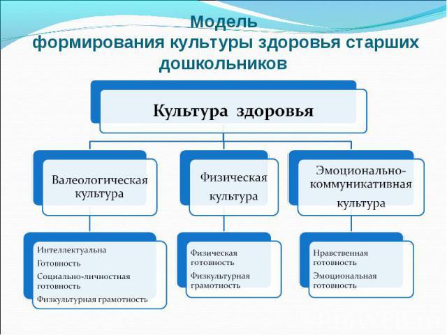 Модель формирования культуры здоровья старших дошкольников