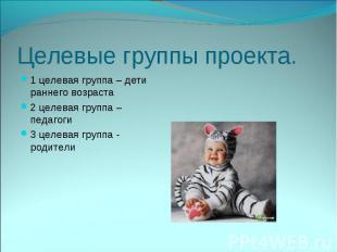 Целевые группы проекта.1 целевая группа – дети раннего возраста2 целевая группа