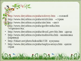 http://www.deryabino.ru/ptaha/solovey.htm - соловейhttp://www.deryabino.ru/ptaha