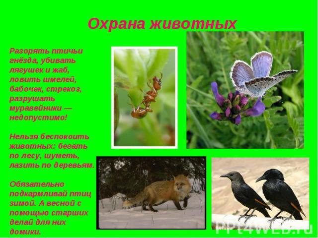 Разорять птичьи гнёзда, убивать лягушек и жаб, ловить шмелей, бабочек, стрекоз, разрушать муравейники — недопустимо!Нельзя беспокоить животных: бегать по лесу, шуметь, лазить по деревьям.Обязательно подкармливай птиц зимой. А весной с помощью старши…