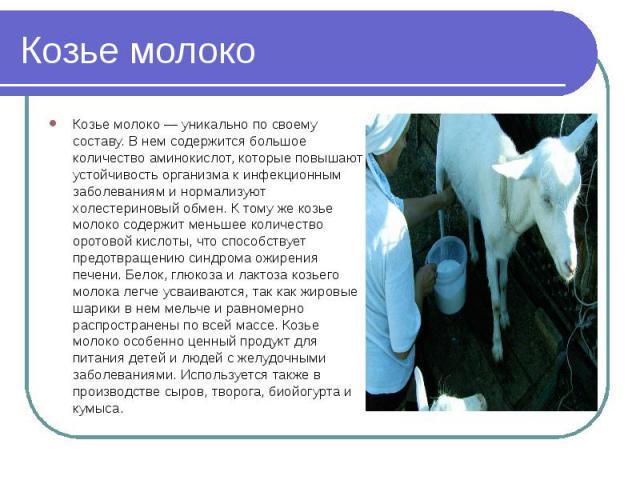 Козье молоко Козье молоко — уникально по своему составу. В нем содержится большое количество аминокислот, которые повышают устойчивость организма к инфекционным заболеваниям и нормализуют холестериновый обмен. К тому же козье молоко содержит меньшее…