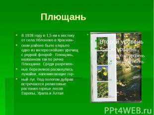 ПлющаньВ 1938 году в 1,5 км к востоку от села Яблоново в Краснин-ском районе был
