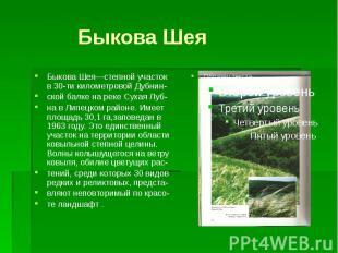 Быкова ШеяБыкова Шея—степной участок в 30-ти километровой Дубнин-ской балке на р