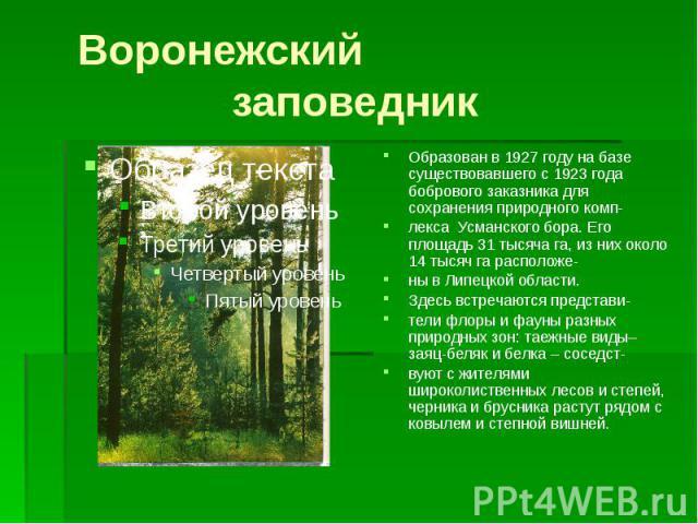 Воронежский заповедникОбразован в 1927 году на базе существовавшего с 1923 года бобрового заказника для сохранения природного комп-лекса Усманского бора. Его площадь 31 тысяча га, из них около 14 тысяч га расположе-ны в Липецкой области.Здесь встреч…