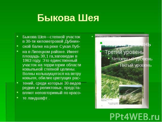 Быкова ШеяБыкова Шея—степной участок в 30-ти километровой Дубнин-ской балке на реке Сухая Луб-на в Липецком районе. Имеет площадь 30,1 га,заповедан в 1963 году. Это единственный участок на территории области ковыльной степной целины. Волны колышущег…