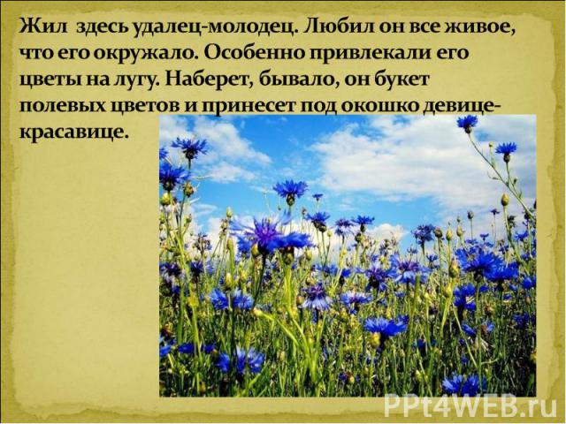 Жил здесь удалец-молодец. Любил он все живое, что его окружало. Особенно привлекали его цветы на лугу. Наберет, бывало, он букет полевых цветов и принесет под окошко девице-красавице.