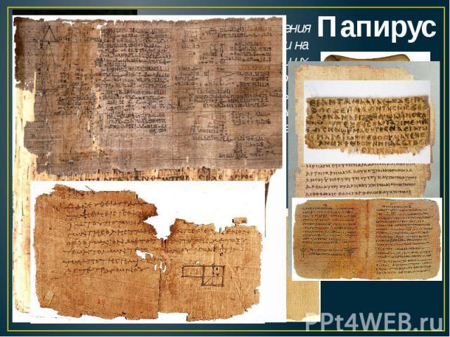ПапирусДелали из стебля растения папируса. Его разрезали на полоски, перекладывали их двумя поперечными слоями и склеивали собственным соком растения, который выделялся под давлением пресса (камня) и высушивали на солнце.