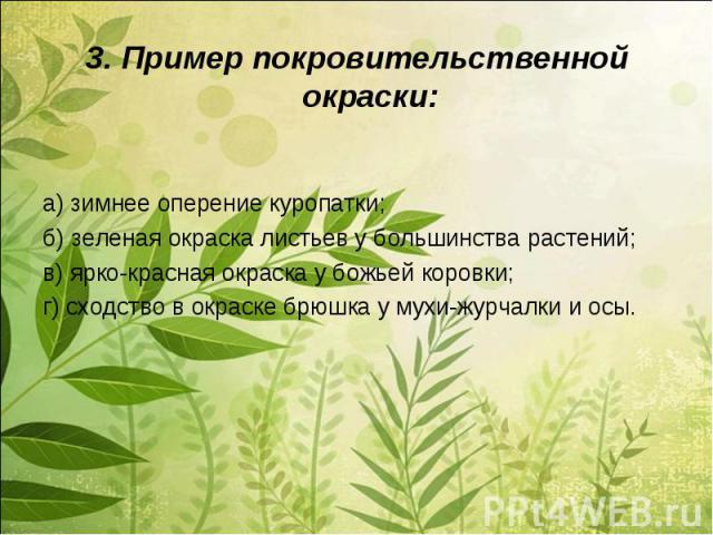 3. Пример покровительственной окраски:а) зимнее оперение куропатки;б) зеленая окраска листьев у большинства растений;в) ярко-красная окраска у божьей коровки;г) сходство в окраске брюшка у мухи-журчалки и осы.