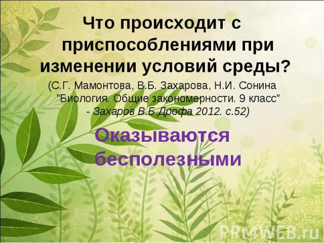 Что происходит с приспособлениями при изменении условий среды? (С.Г. Мамонтова, В.Б. Захарова, Н.И. Сонина