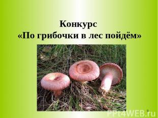 Конкурс «По грибочки в лес пойдём»