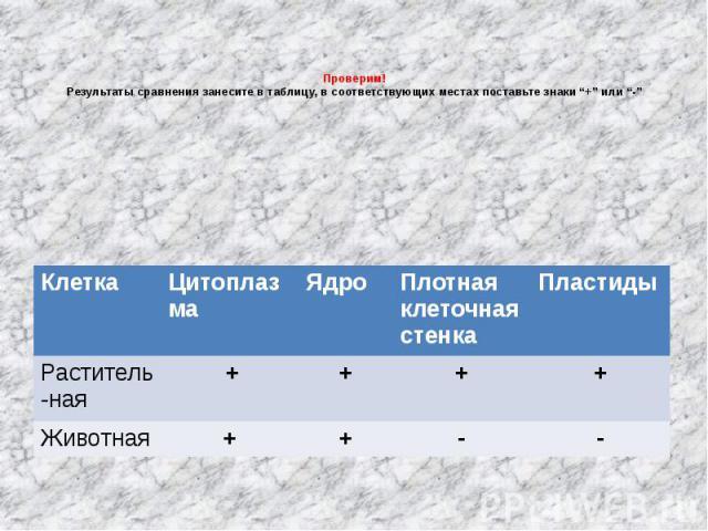"""Проверим!Результаты сравнения занесите в таблицу, в соответствующих местах поставьте знаки """"+"""" или """"-"""""""