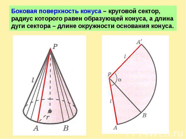 Боковая поверхность конуса – круговой сектор, радиус которого равен образующей конуса, а длина дуги сектора – длине окружности основания конуса.