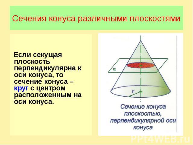 Сечения конуса различными плоскостямиЕсли секущая плоскость перпендикулярна к оси конуса, то сечение конуса – круг с центром расположенным на оси конуса.