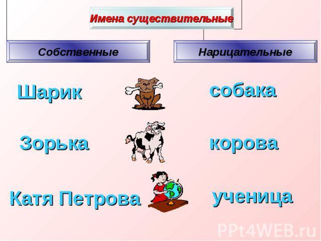 Имена существительные Собственные Нарицательные Шарик собака Зорька ученица корова Катя Петрова