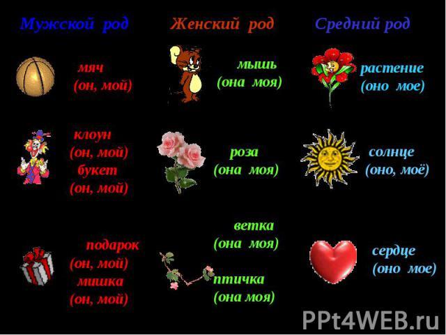 Женский род роза (она моя) растение (оно мое) ветка (она моя) птичка (она моя) Мужской род Средний род мяч (он, мой) клоун (он, мой) букет (он, мой) подарок (он, мой) мишка (он, мой) мышь (она моя) солнце (оно, моё) сердце (оно мое)