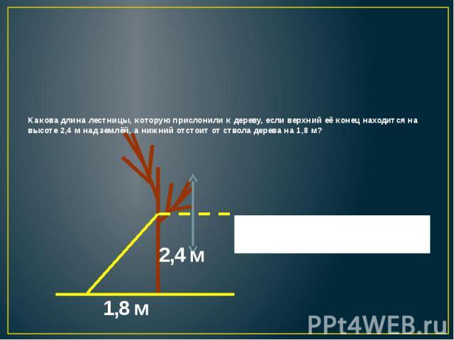 Какова длина лестницы, которую прислонили к дереву, если верхний её конец находится на высоте 2,4 м над землёй, а нижний отстоит от ствола дерева на 1,8 м?