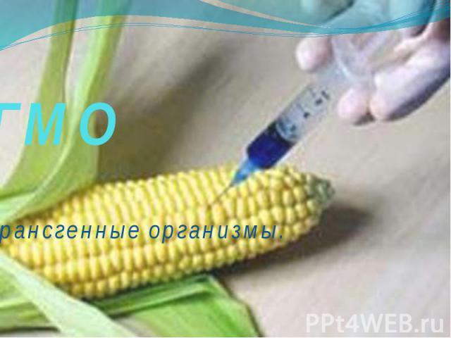 ГМОТрансгенные организмы.