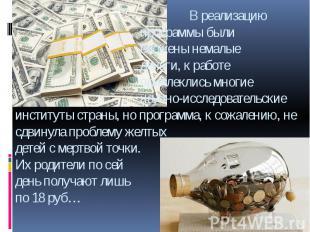 В реализацию программы были вложены немалые деньги, к работе привлеклись многие