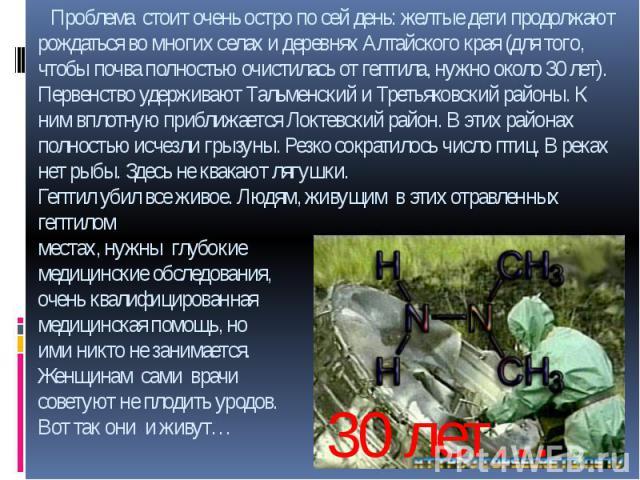 Проблема стоит очень остро по сей день: желтые дети продолжают рождаться во многих селах и деревнях Алтайского края (для того, чтобы почва полностью очистилась от гептила, нужно около 30 лет). Первенство удерживают Тальменский и Третьяковский районы…