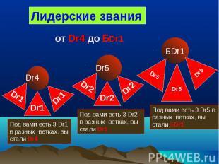 Лидерские звания Dr4 Под вами есть 3 Dr1 в разных ветках, вы стали Dr4 Dr1 Dr5 П