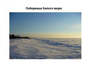 Побережье Белого моря.