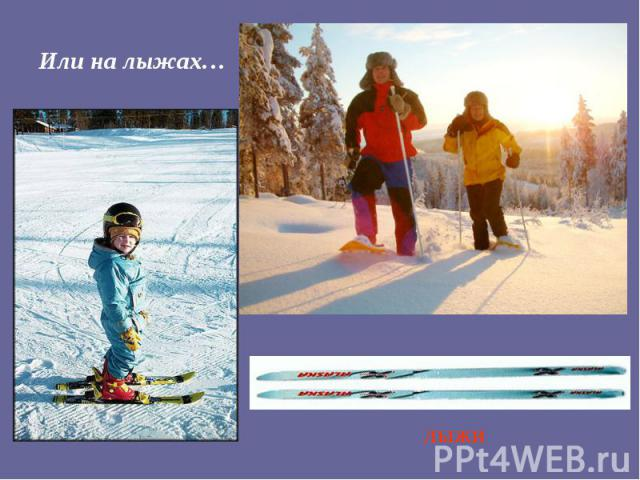 Или на лыжах…