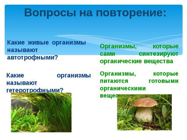 Вопросы на повторение:Какие живые организмы называют автотрофными?Какие организмы называют гетеротрофными?Организмы, которые сами синтезируют органические веществаОрганизмы, которые питаются готовыми органическими веществами