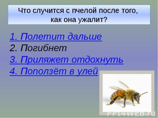 Что случится с пчелой после того, как она ужалит?1. Полетит дальше2. Погибнет3. Приляжет отдохнуть4. Поползёт в улей