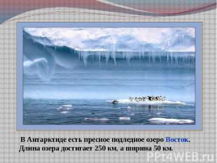 В Антарктиде есть пресное подледное озеро Восток.Длина озера достигает 250 км, а