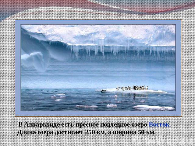 В Антарктиде есть пресное подледное озеро Восток.Длина озера достигает 250 км, а ширина 50 км.