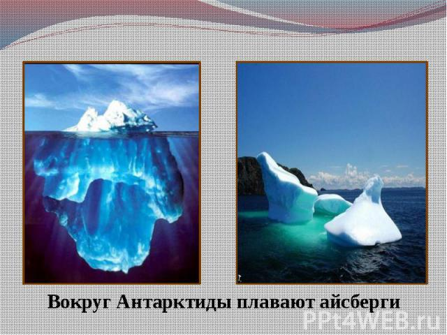 Вокруг Антарктиды плавают айсберги